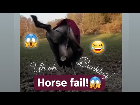 Horse fail🤣🤣||bucking and rearing 💞💞