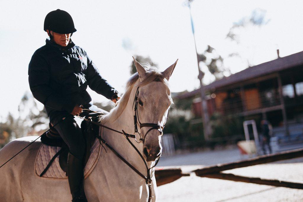 Qu'est-ce que le prêt d'un cheval?