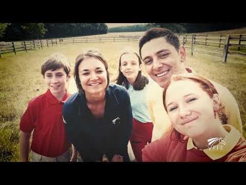 Tous à cheval – Poulain nouveau-né