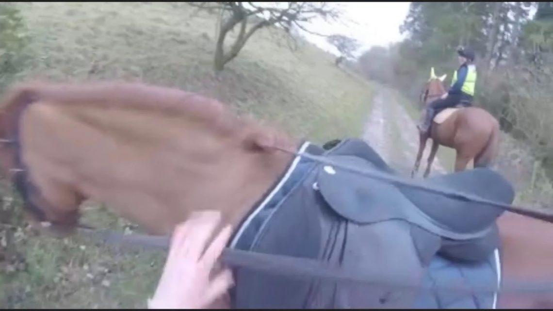 Échec de l'équitation