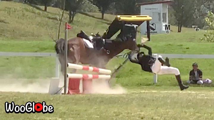 Échec de l'équitation épique – Essayez de ne pas rire ||  Meilleures vidéos virales