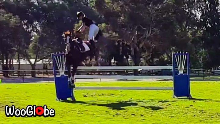 Best Horse Fail 2020 – Essayez de ne pas rire ||  Meilleures vidéos virales