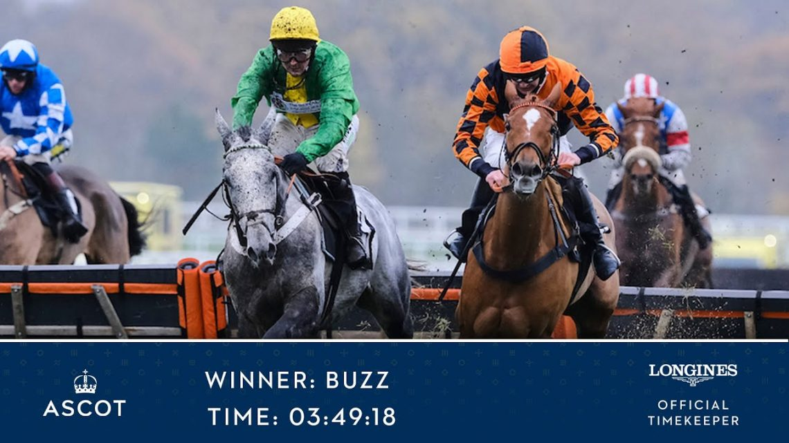 Buzz Wins The Coral 'Fail To Finish' Free Bet Handicap Hurdle (Class 2)