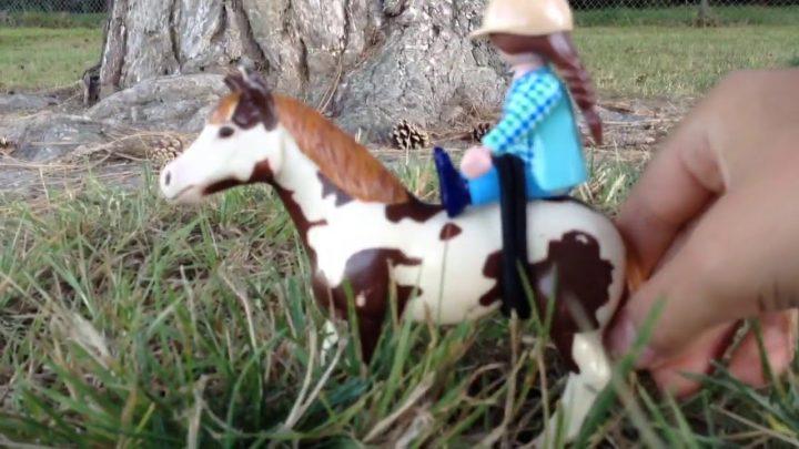 Capturer l'fail du cheval