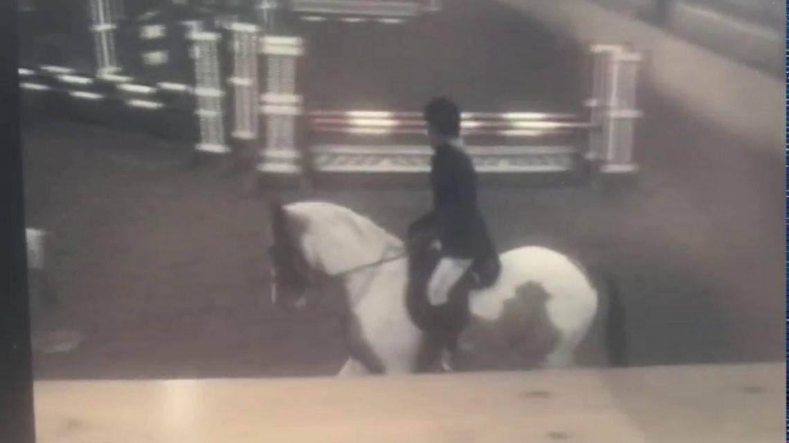 Chute de cheval – Échec du saut