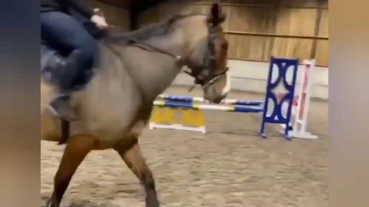 Chutes et échecs de chevaux (14)