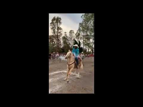 Cowboy déchire le doigt en faisant du cheval au lasso – Brésil FAIL Pain Video