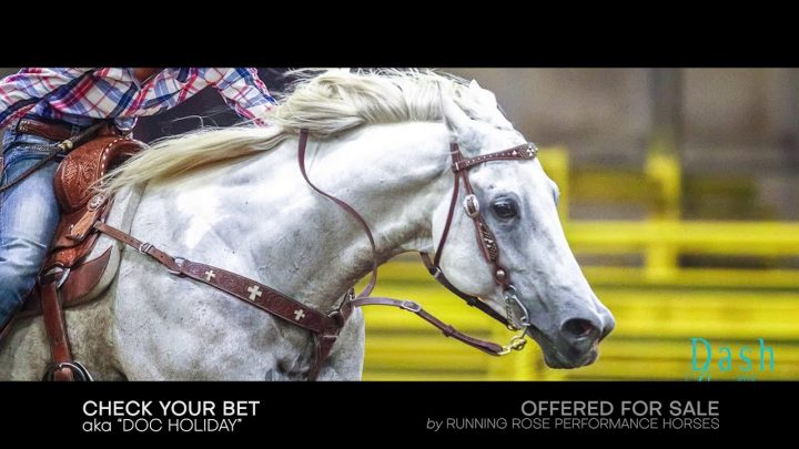 Doc Holliday, WPRA 1D Gelding, APHA Champion Barrel Horse @ Rodeo Houston 2020