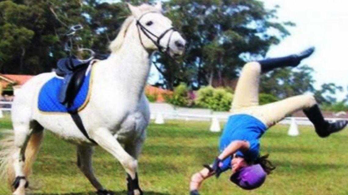 ESSAYEZ DE NE PAS RIRE ★ Les gens drôles échouent au défi d'équitation ||  Bébés et animaux drôles