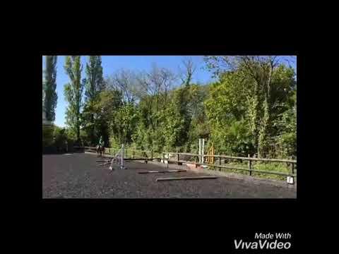Échec de la vidéo