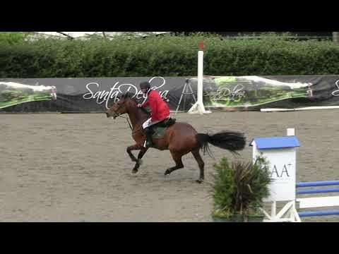 Échec du cheval et du cavalier 2020 Guatemala