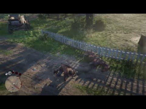 Échec du saut de cheval – Red Dead Online PS4