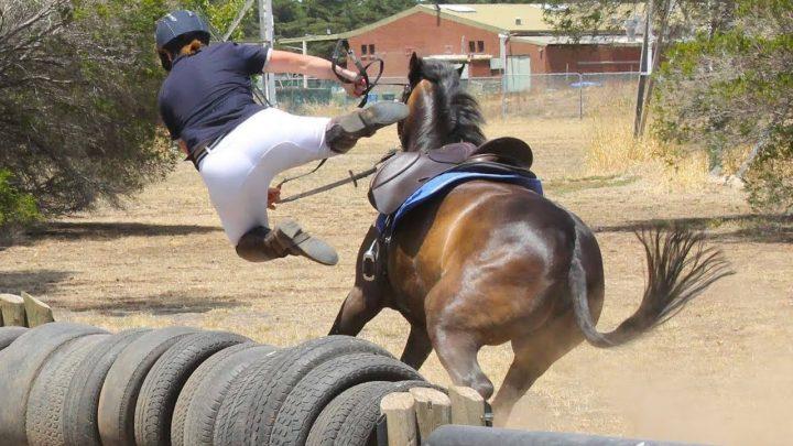 Horse FAILS & FALLS 2020 TOP, vidéo Equi Rider.
