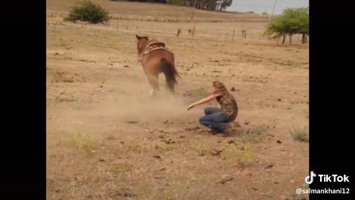 Horse Rider fail to control