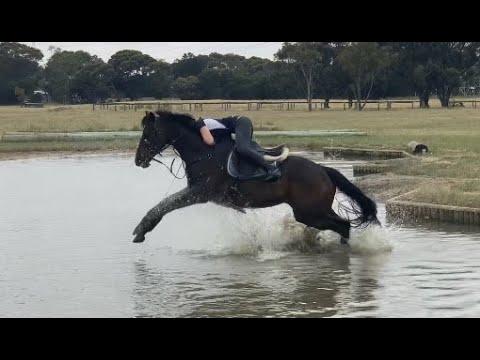 Horse Riding Fails 2020