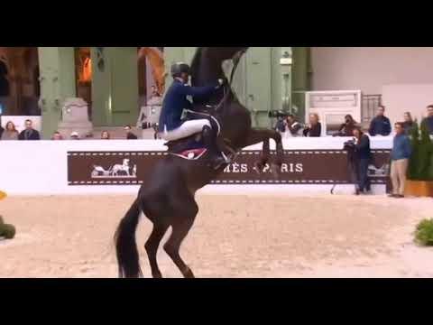 ||Horse fail|| r u crazy
