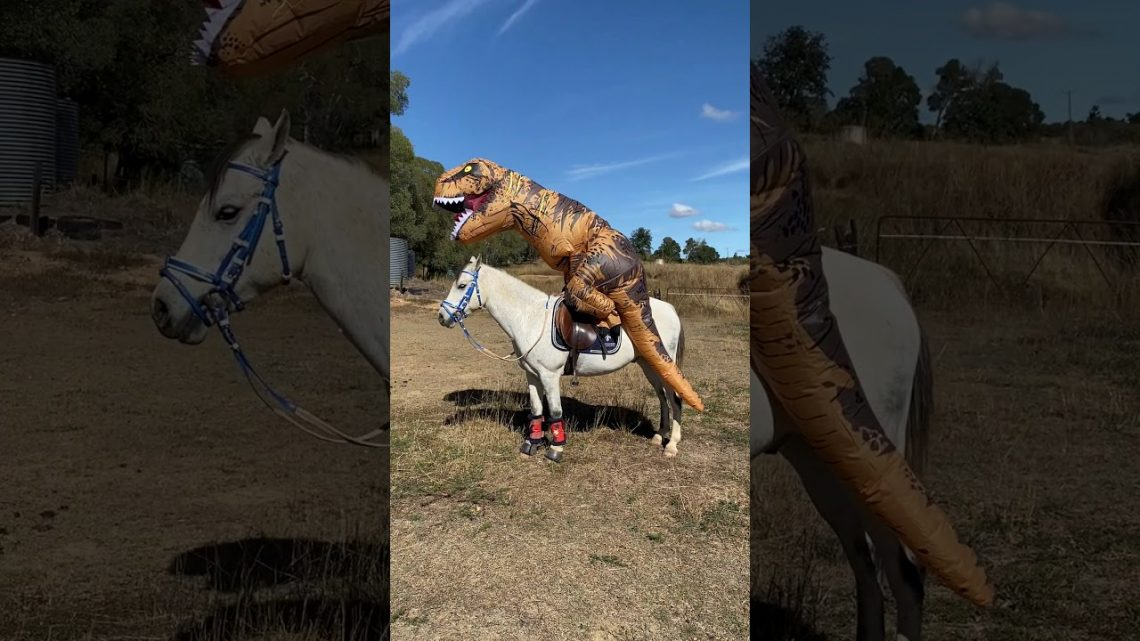 Inflatable T-rex horse fail