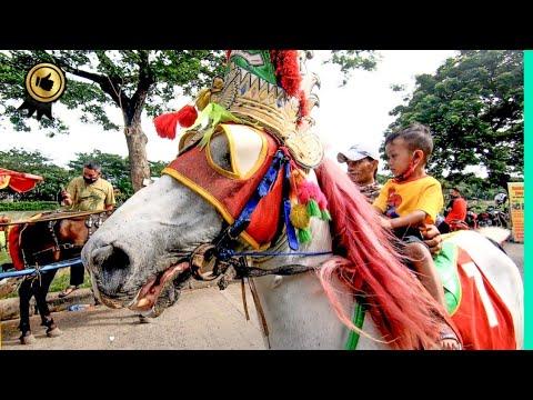 🐎 KUDA DELMAN TV 🔴 Naik Kuda Delman BKT bersama TUKANG KUDA BKT – CHEVAL DOKAR WISATA KUDA DELMAN