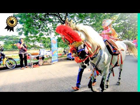 🐎 KUDA DELMAN TV 🔴 Naik Kuda TUKANG KUDA BKT, Kuda Tunggang Horse Dokar, Delman Lucu