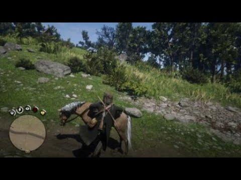 Le cheval fait un saut