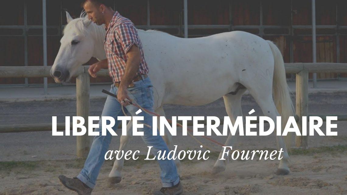 Liberty intermédiaire avec Ludovic Fournet