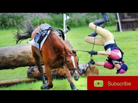 Meilleure compilation Horse Fail