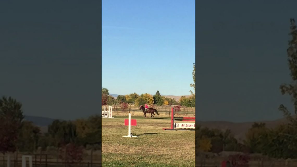 Ruby et Kinsley – Jumping 3 pieds Automne 2017
