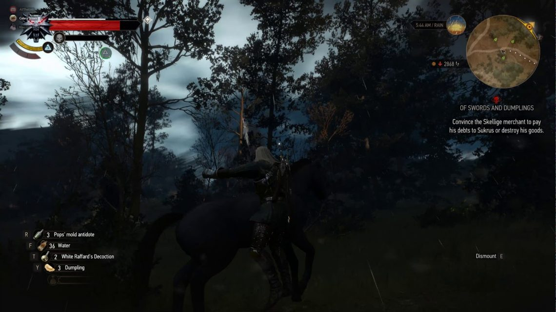 The Witcher 3 Taming Wild Horses FAIL