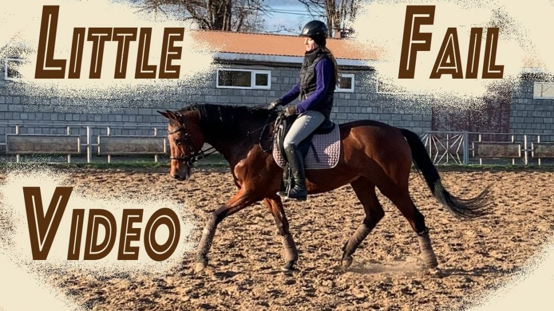 Vidéo de Little Horse Fail |  Natation Blacky |  LanaZavada