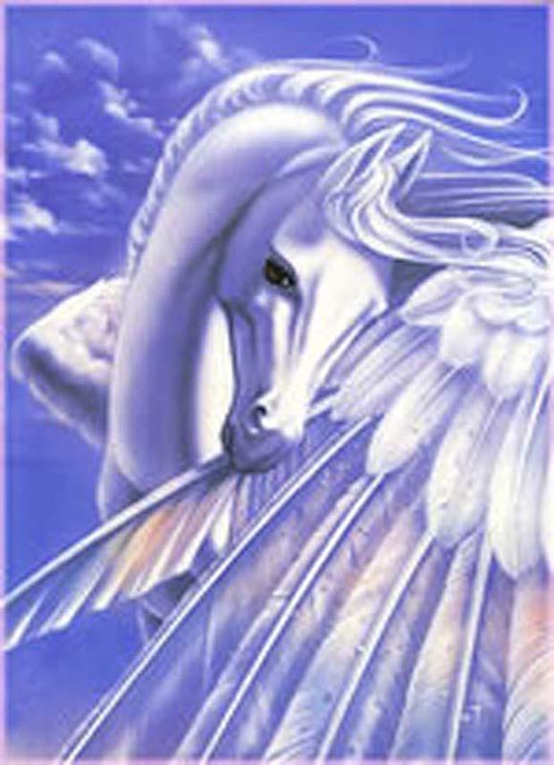 cheval mandala à colorier