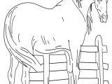 coloriage cheval et son poulain