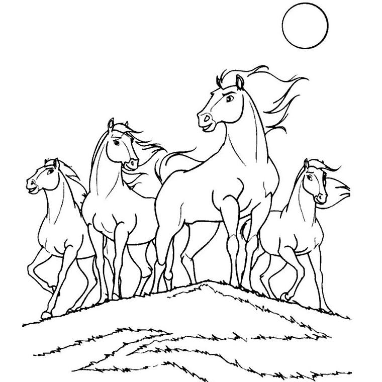 coloriage cheval galop