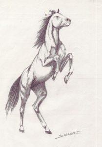 coloriage cheval mandala a imprimer