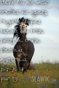 coloriage de cheval au galop