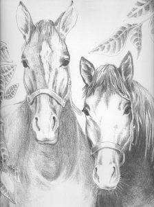 coloriage de chevaux magnifique