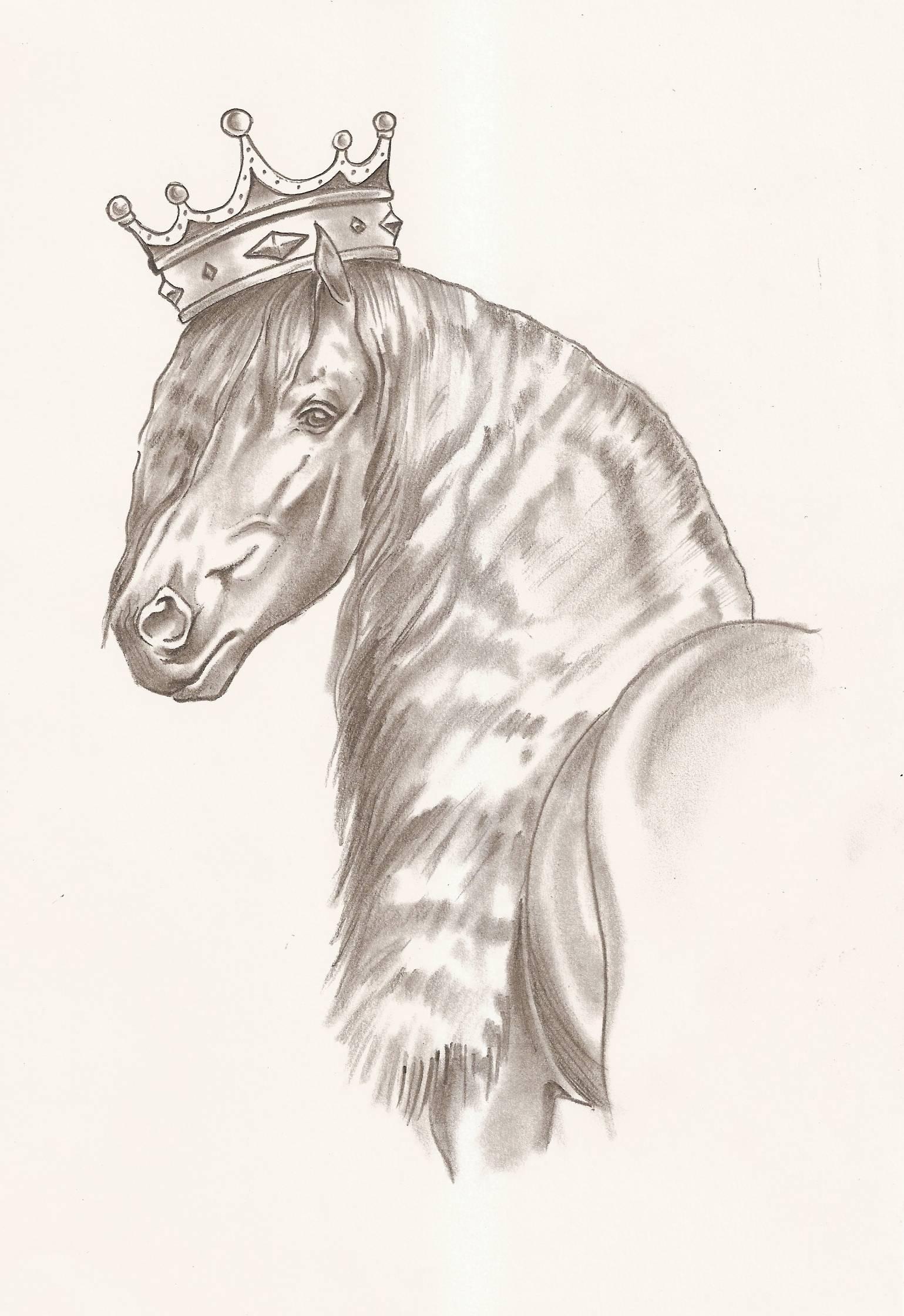 coloriage de petshop cheval