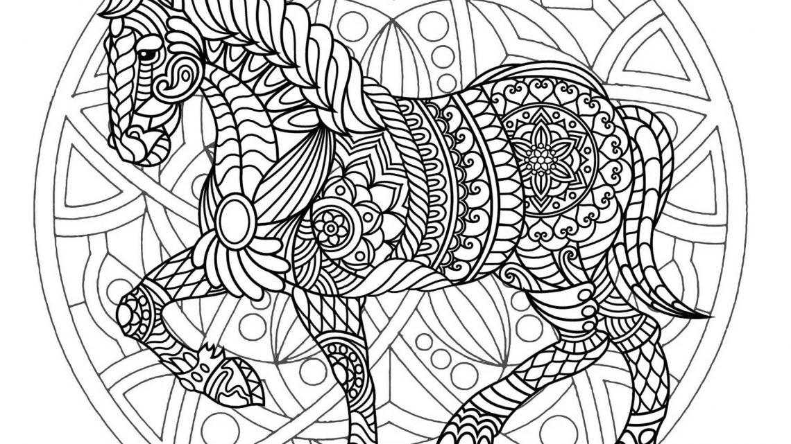 Coloriage Poney Et Cheval