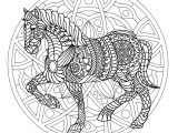 coloriage poney et cheval