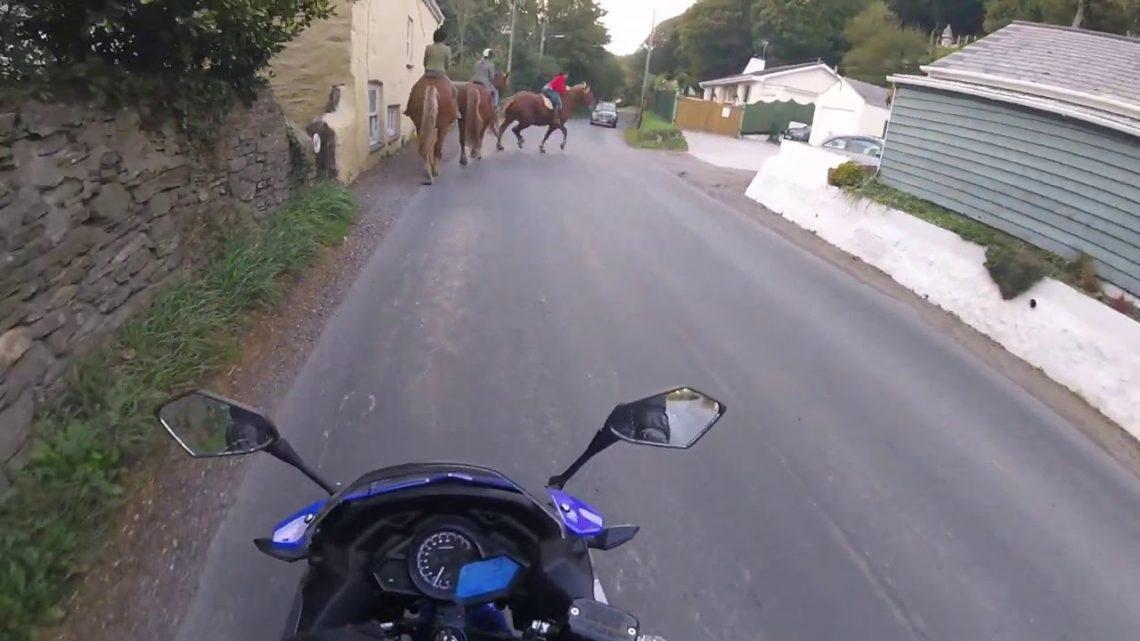 fail de cheval
