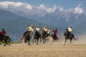 photo de cheval karabakh - cheval d'azerbaïjan
