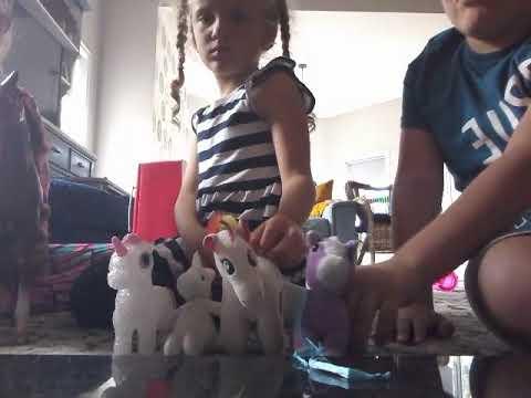 the horse family| The FAIL 2
