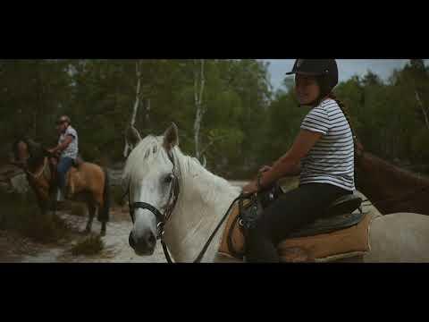 Avoine et Picotin – A cheval et libre sur les chemins