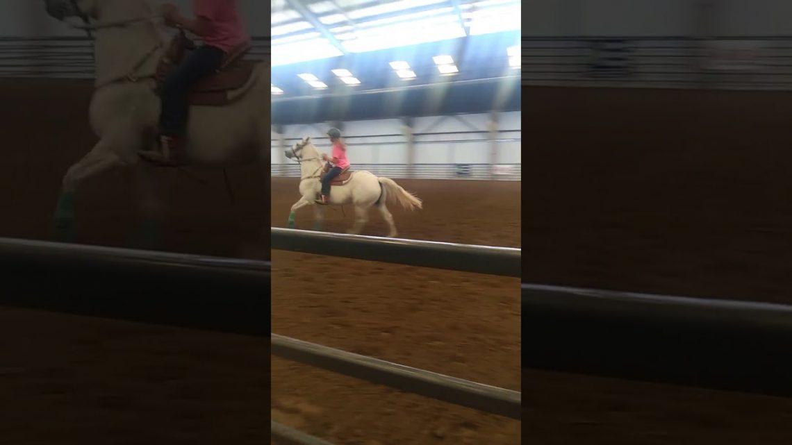 Barrel horse fail