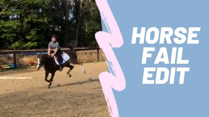 Cheval FAIL / FALL modifier |  Cate Dubill + Bannière (Told Ya So)