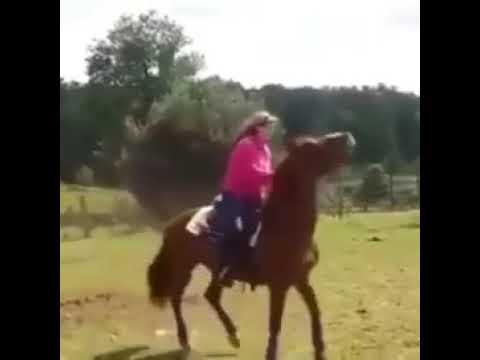 Échec du cheval 😂 #short