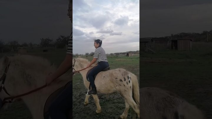 Funny fail video( this is me on the horse)