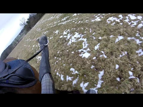 GoPro Horse Fail