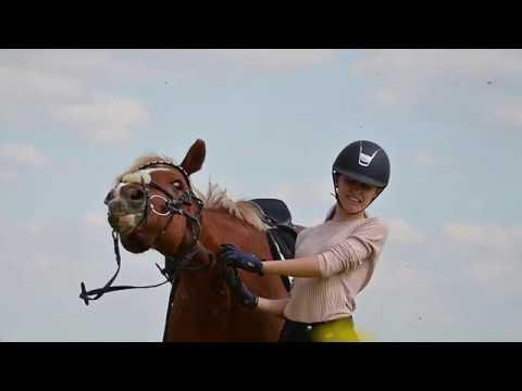 Horse Fails et moments drôles ||  Franzis Ponyteam