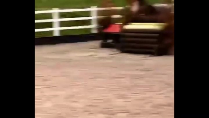 Horse refusals, bucks, falls and fails