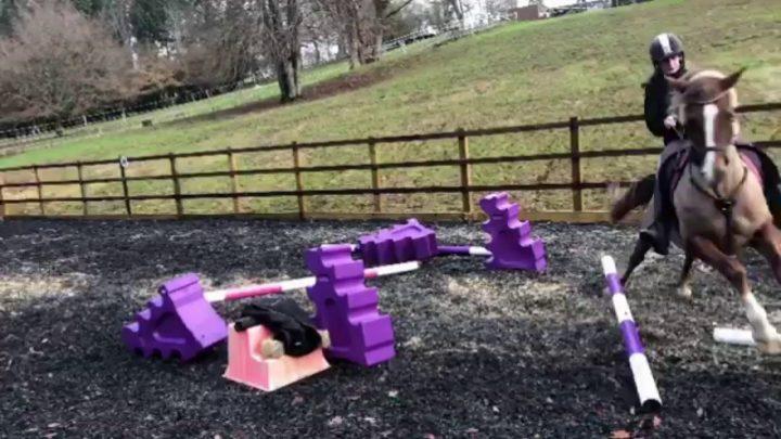 Horse tombe, échoue // Clip vidéo